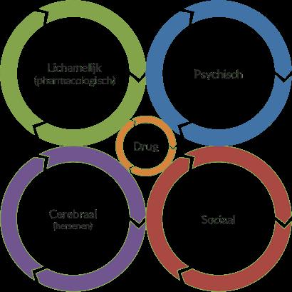 De cirkels van Van Dijk